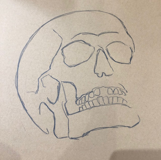 charcoal sketched skull - the starting point for the project